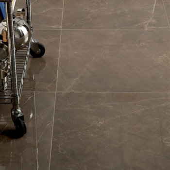 Porcelain Tile Passion Polished Rectified